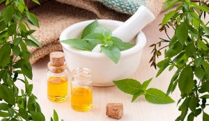 Small business investment opportunities in Japan - herbal medicine