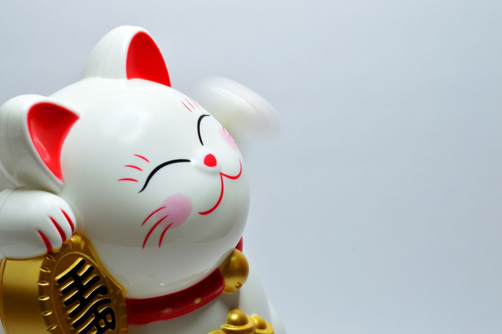Japanese money cat.